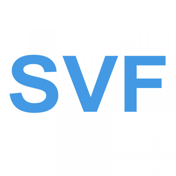 Solenoid valve filters
